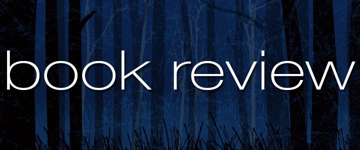 Book Review: The Demon in the Wood by Leigh Bardugo