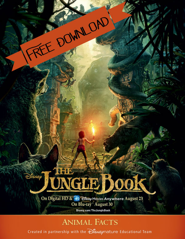 The Jungle Book Giveaway + Free Activity Worksheet Downloads