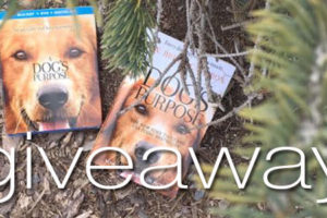 A Dog's Purpose Giveaway Book Movie