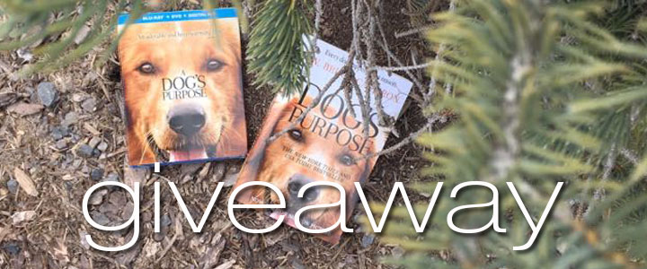 A Dog's Purpose Movie Giveaway!