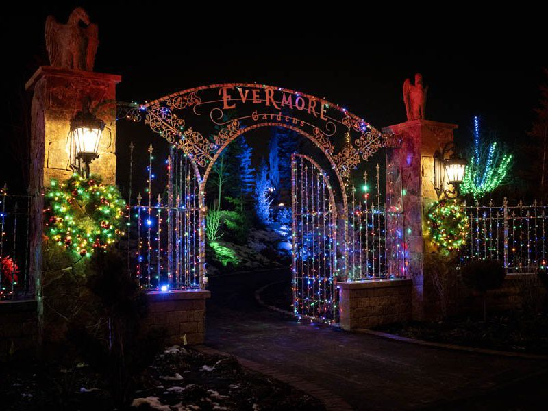 Aurora at Evermore Park: Part 1 - Christmas Magic with Goblins and Dragons  - Books: A true story